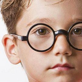 Коррекция зрительного восприятия детей дошкольного возраста с нарушением зрения